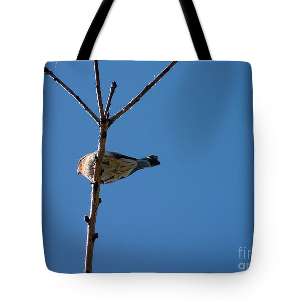 Tote Bag featuring the photograph Bottoms Up by Meghan at FireBonnet Art