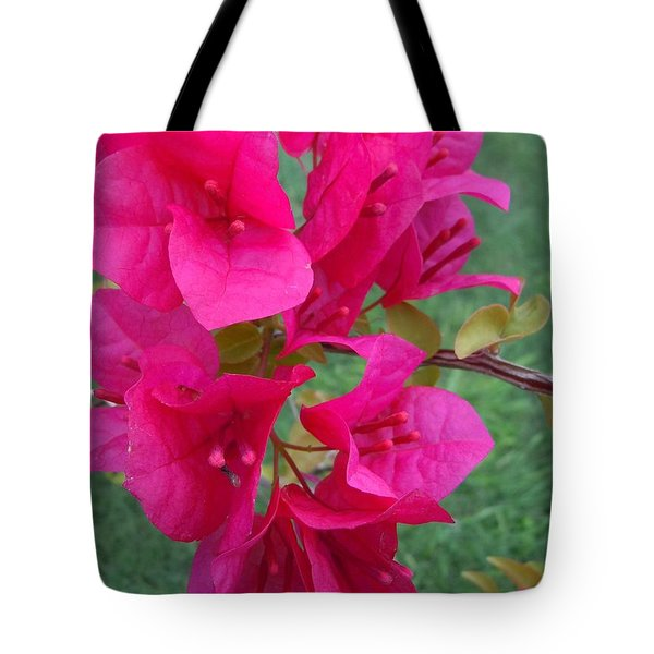 Bougainvillea Dream #2 Tote Bag