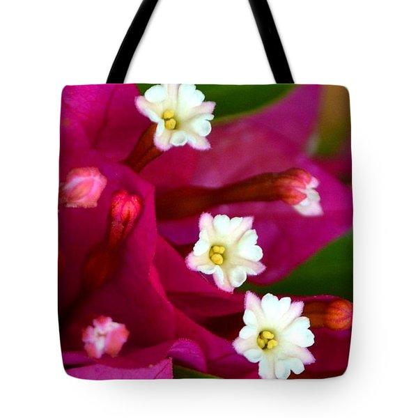 Tote Bag featuring the photograph Bougainvillea- Fuschia by Darla Wood