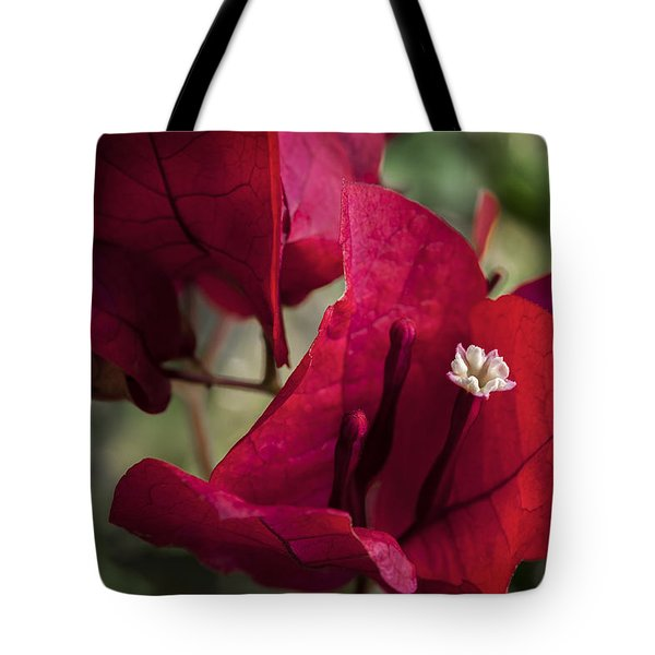 Tote Bag featuring the photograph Bougainvillea by Steven Sparks