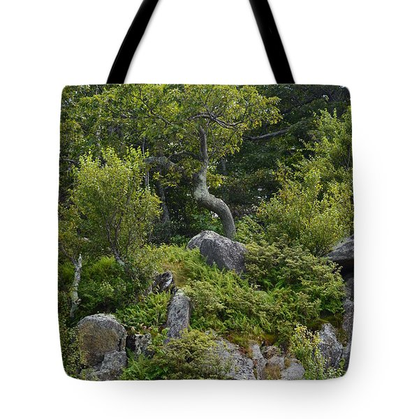 Tote Bag featuring the photograph Boulder Green by Cathy Shiflett