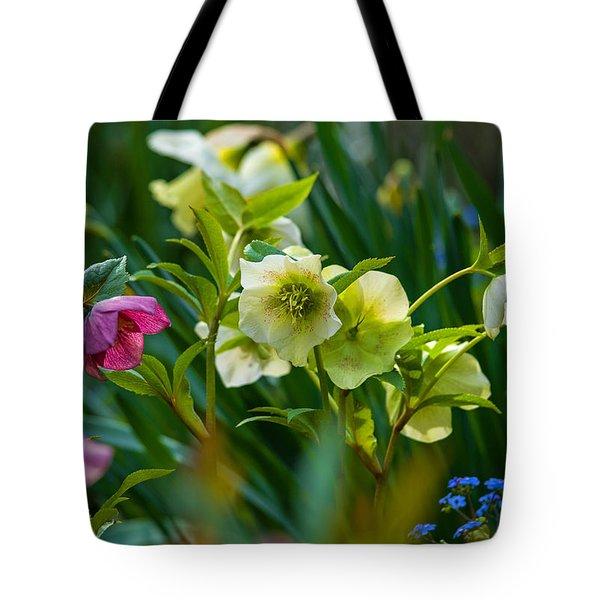 Tote Bag featuring the photograph Bouquet Of Lenten Roses by Jordan Blackstone
