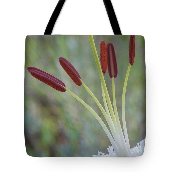 Bouquet On Bokeh Tote Bag by Jean-Pierre Ducondi