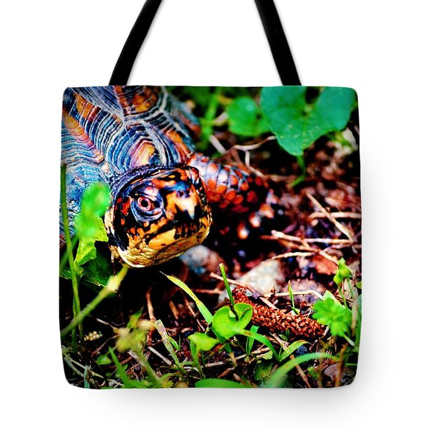 Box Turtle Tote Bag by Tara Potts
