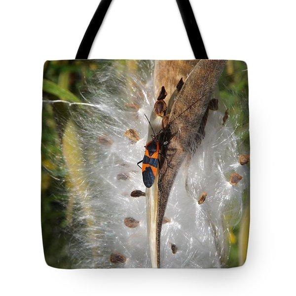 Boxelder On Butterfly Milkweed 2 Tote Bag