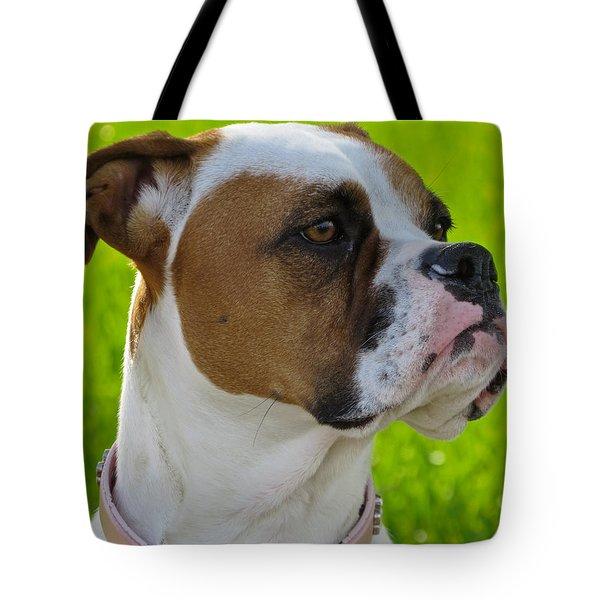 Boxer Babe Tote Bag by Ella Kaye Dickey