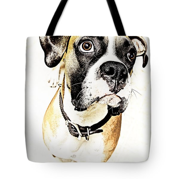 Tote Bag featuring the photograph Boxer Dog Poster by Peter v Quenter