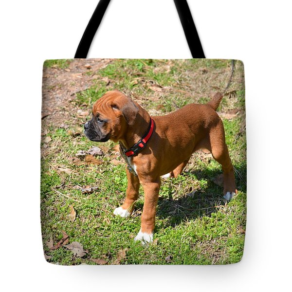 Boxer Puppy 2 Tote Bag by Maria Urso