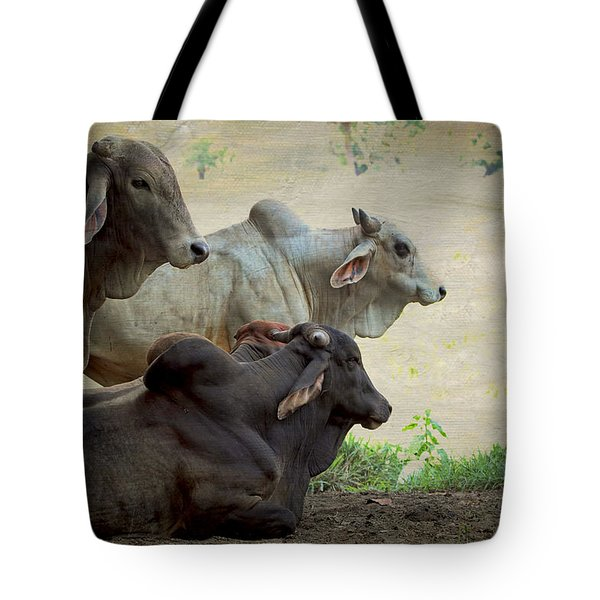 Tote Bag featuring the photograph Brahman Cattle by Peggy Collins