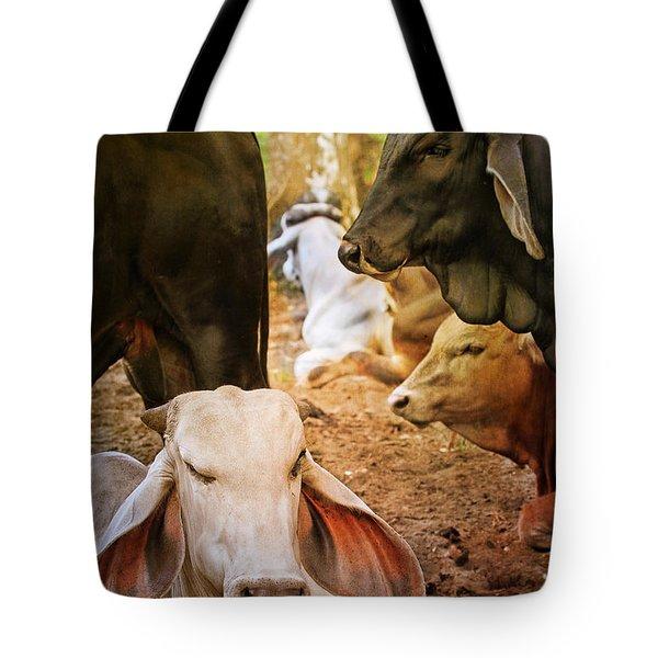 Brahman Cattle Vertical Tote Bag
