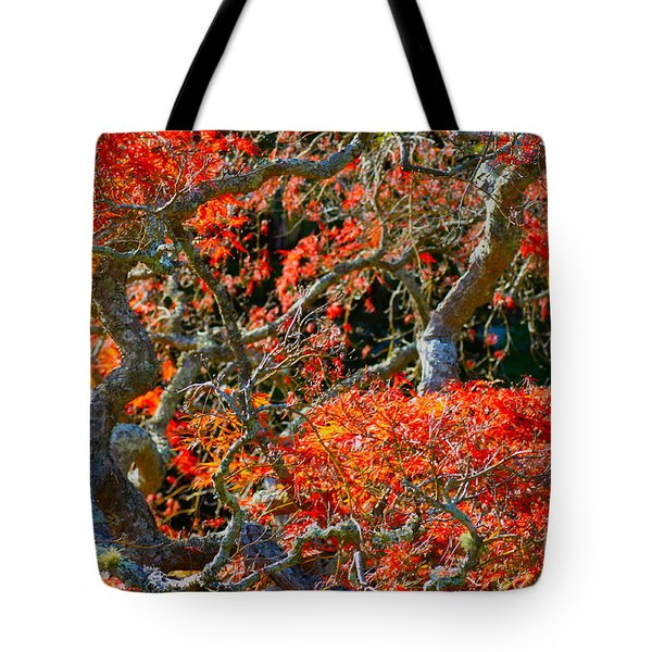 Branches Of Color Tote Bag by Cathy Dee Janes