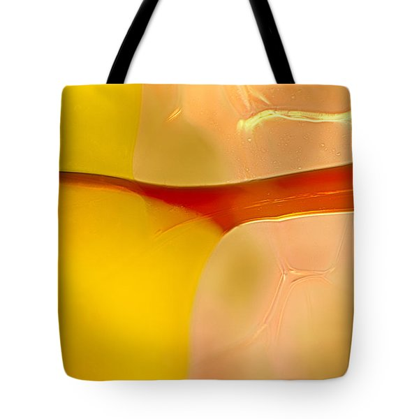 Branches Of Light Tote Bag by Omaste Witkowski