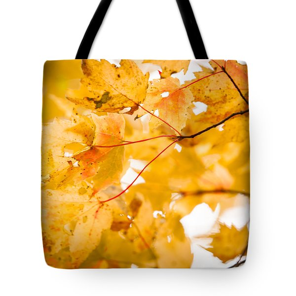 Branching Yellow Tote Bag by Melinda Ledsome