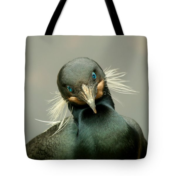 Tote Bag featuring the photograph Brandt's Cormorant by Bob and Jan Shriner