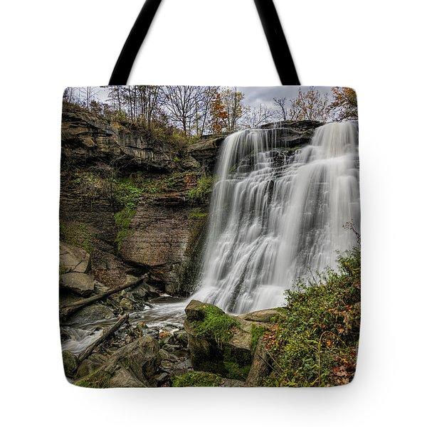 Brandywine Falls Tote Bag by James Dean