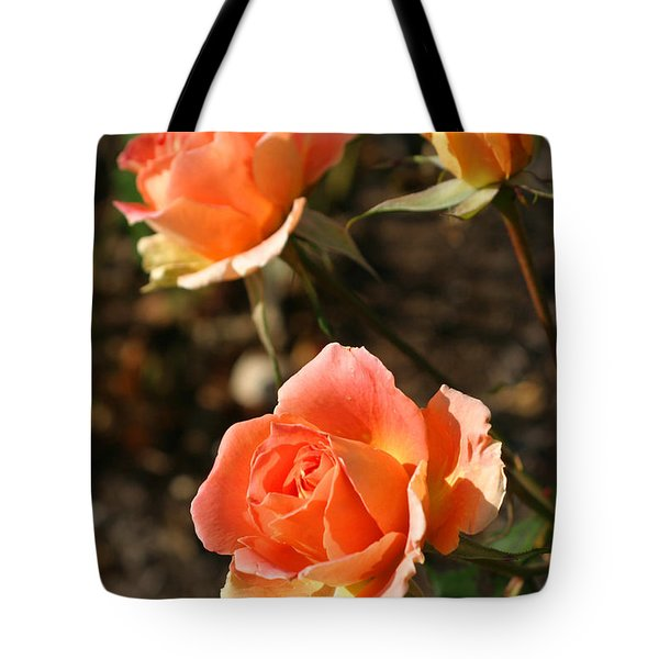 Brass Band Roses In Autumn Tote Bag by Living Color Photography Lorraine Lynch