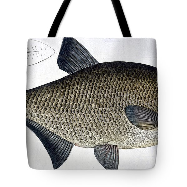 Bream Tote Bag by Andreas Ludwig Kruger