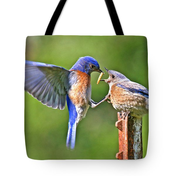 Breast Feeding. Tote Bag