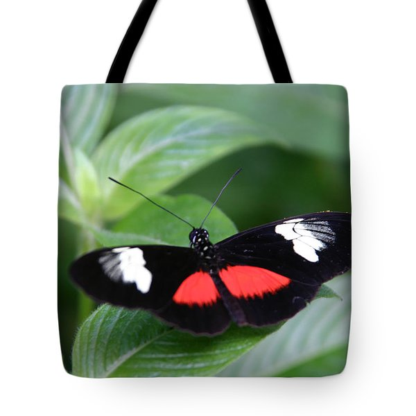 Breathtaking Contrast Tote Bag by Denyse Duhaime