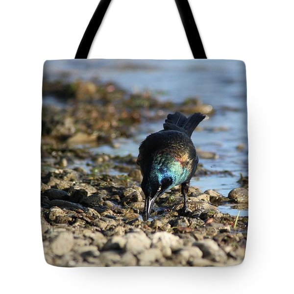 Brewer's Blackbird Tote Bag by Ramabhadran Thirupattur