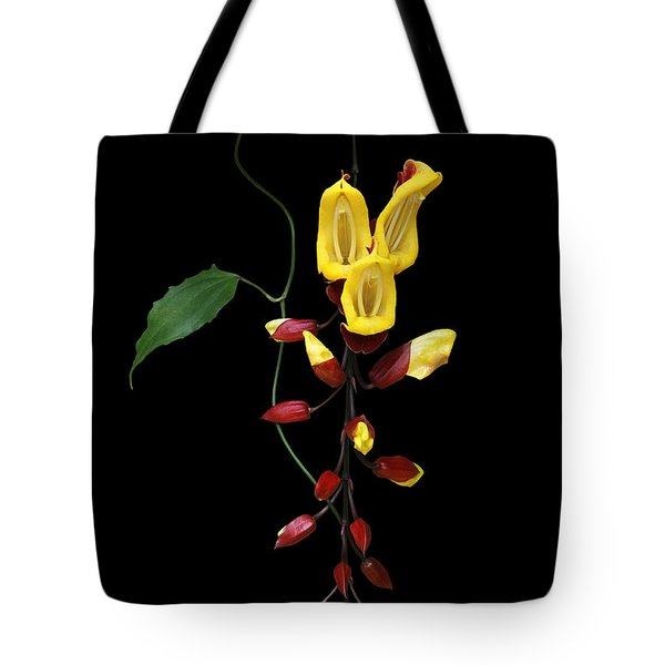 Brick And Butter Vine Tote Bag