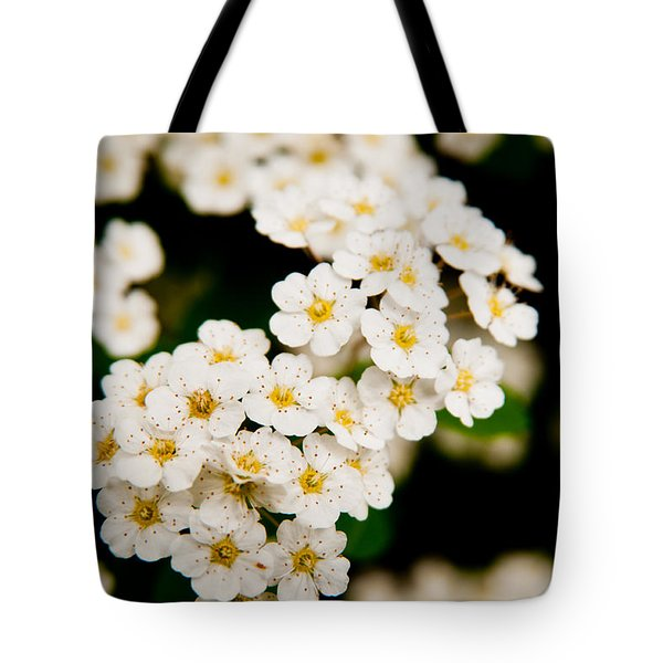 Tote Bag featuring the photograph Bridal Veil Spirea by Brenda Jacobs
