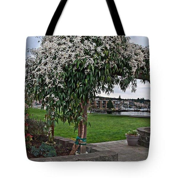 Bridal Veil Vine Stephanotis Growing On A Trellis Tote Bag