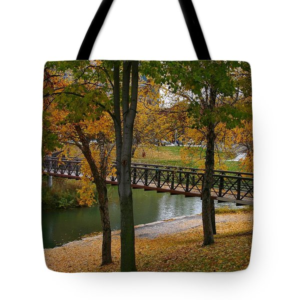 Tote Bag featuring the photograph Bridge To Fall by Elizabeth Winter