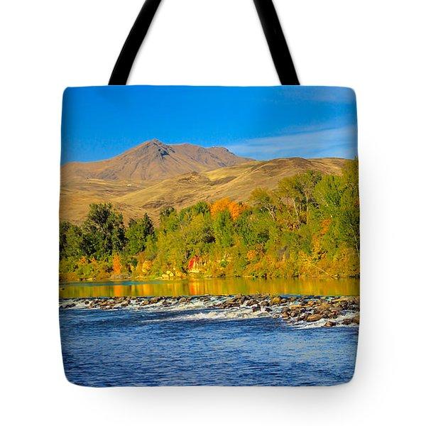 Bridge View Tote Bag by Robert Bales