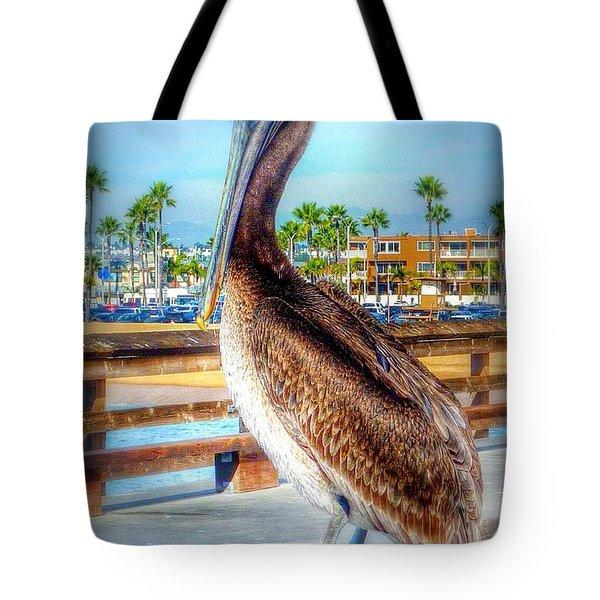 Brief Pelican Encounter  Tote Bag by Susan Garren