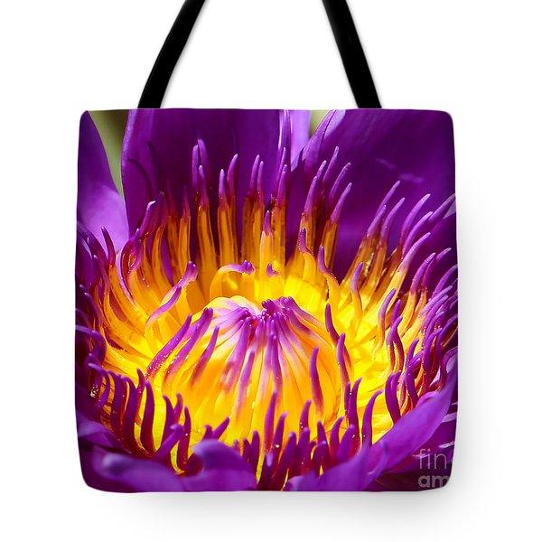 Bright And Bold Tote Bag by Sabrina L Ryan