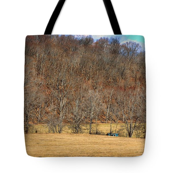 Bright Blue Shed Tote Bag by Paulette B Wright
