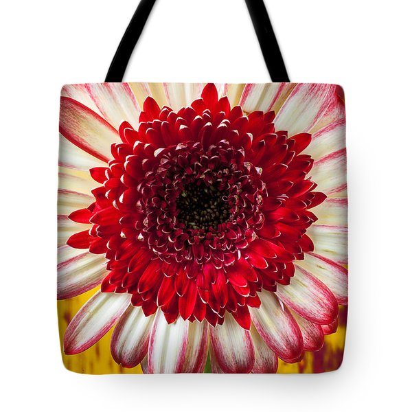 Bright Red And White Mum Tote Bag by Garry Gay