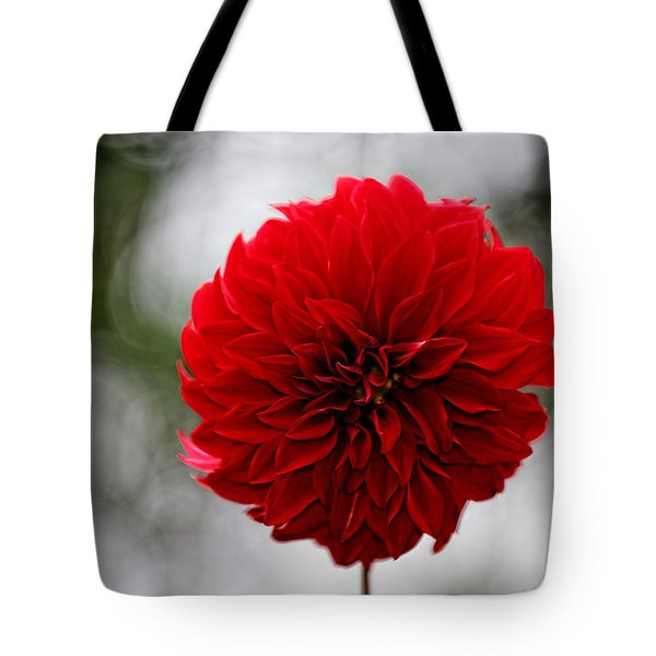 Bright Red Dahlia Tote Bag
