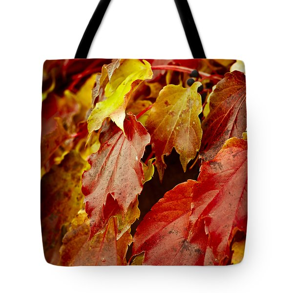 Brightest Before The Fall Tote Bag by Christi Kraft