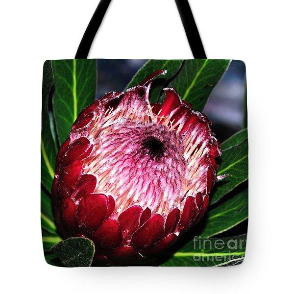 Bright'n'happy Protea Tote Bag by Kaye Menner