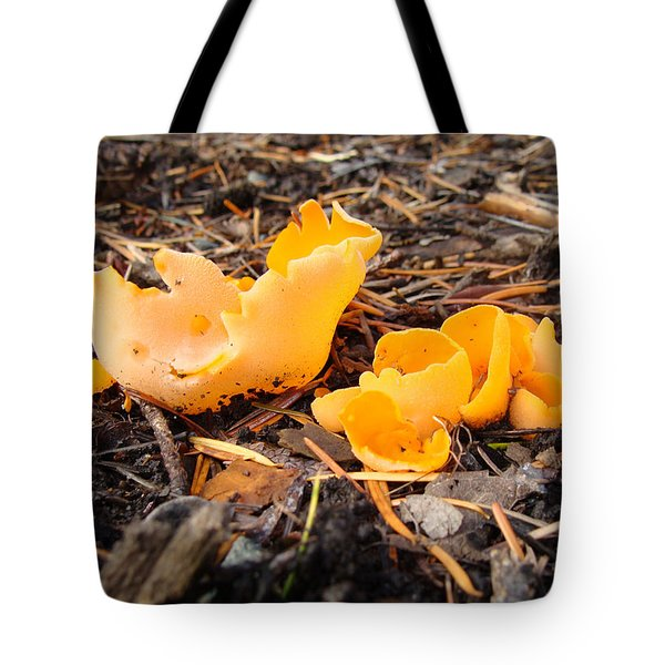 Tote Bag featuring the photograph Brilliance In Orange by Cheryl Hoyle