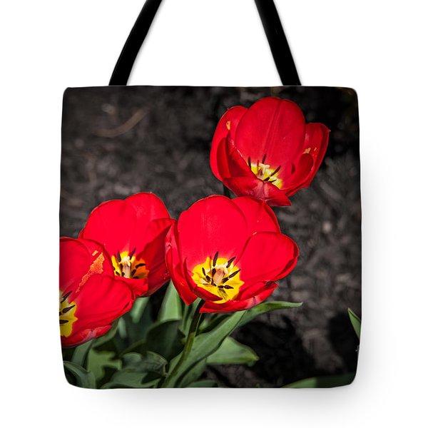 Brilliant 1 Tote Bag by Bob and Nancy Kendrick