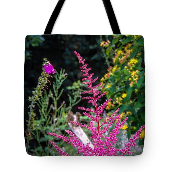 Brilliant Astilbe In Markree Castle Gardens Tote Bag