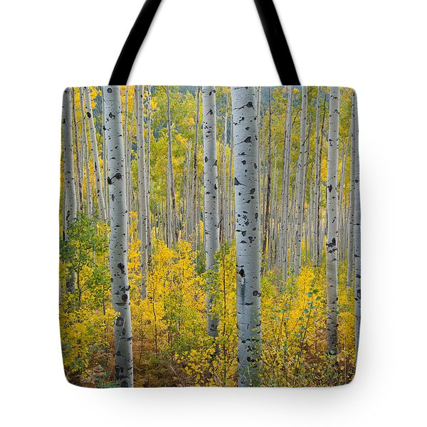 Brilliant Colors Of The Autumn Aspen Forest Tote Bag