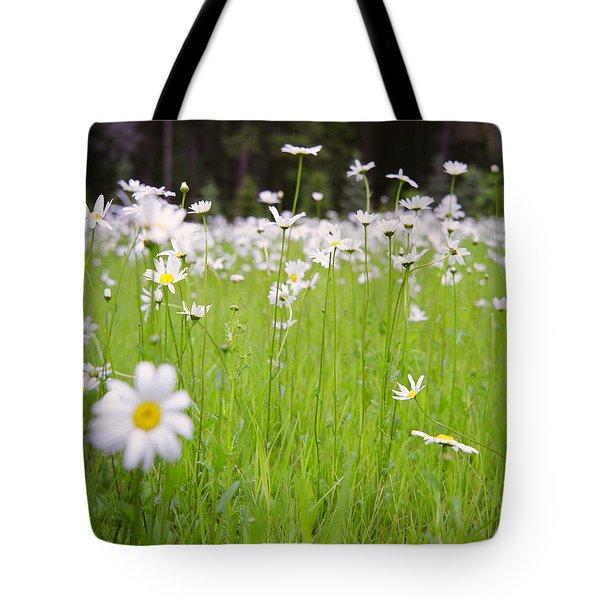 Brilliant Daisies Tote Bag