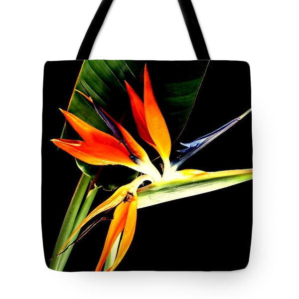 Tote Bag featuring the photograph Brilliant by Diane Merkle