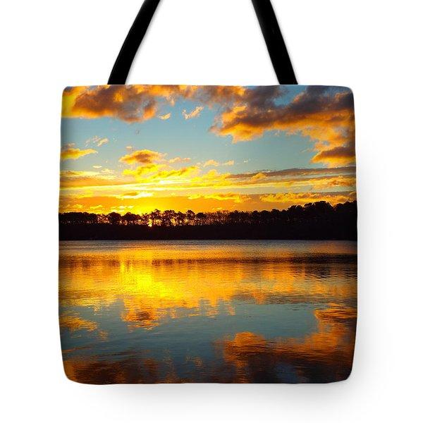 Brilliant Sunrise Tote Bag by Dianne Cowen