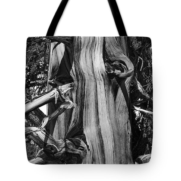 Tote Bag featuring the photograph Bristle-cone Pine-2 by Mae Wertz
