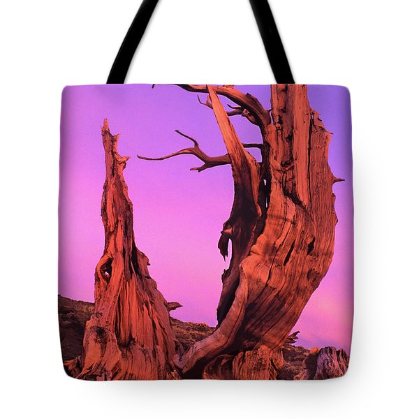 Tote Bag featuring the photograph Bristlecone Pine At Sunset White Mountains Californa by Dave Welling