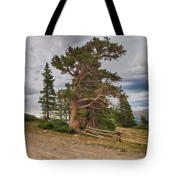Tote Bag featuring the photograph Bristlecone Pines by Bitter Buffalo Photography