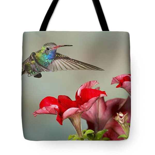Broad Billed Hummingbird 4 Tote Bag