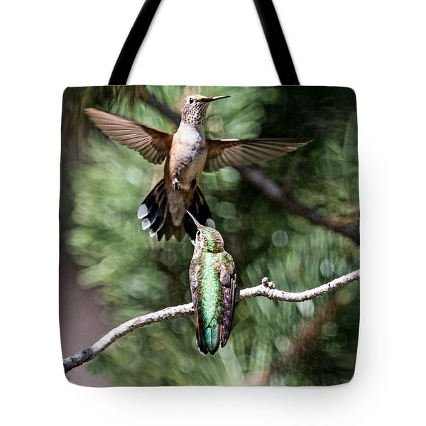 Broad-tailed Hummingbird Pair Tote Bag