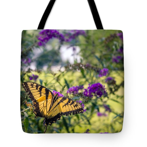 Broken Beauty Tote Bag by Rob Sellers