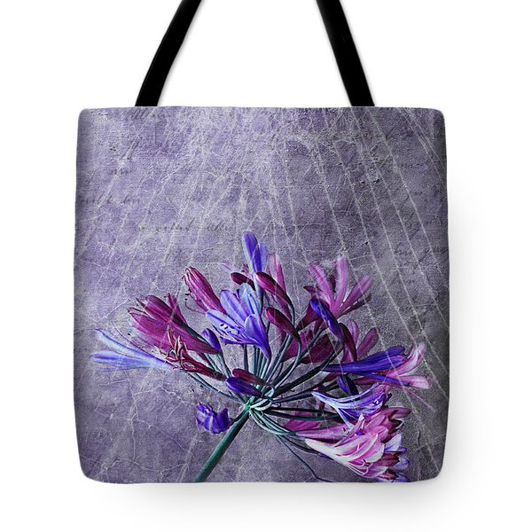 Broken Dreams Tote Bag by Claudia Moeckel